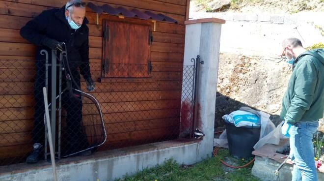Tasso_servizio veterinario_Rimini
