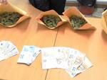 Rimini_marijuana_Carabinieri