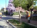 Manutenzione del verde pubblico in corso a Bagnacavallo e Villanova