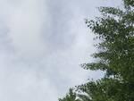 cielo velato meteo