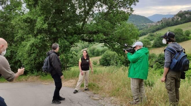 Rimini_Rai News 24