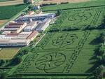 """Labirinto Effimero di Alfonsine: dedicato all'Inferno di Dante, riparte il 13 giugno """"a prova"""" di Covid"""