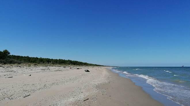 spiaggia Riserva del Bevano
