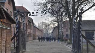Auschwitz Nazismo