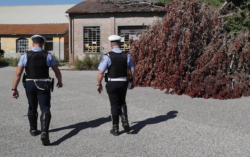 Zona Darsena_Polizia