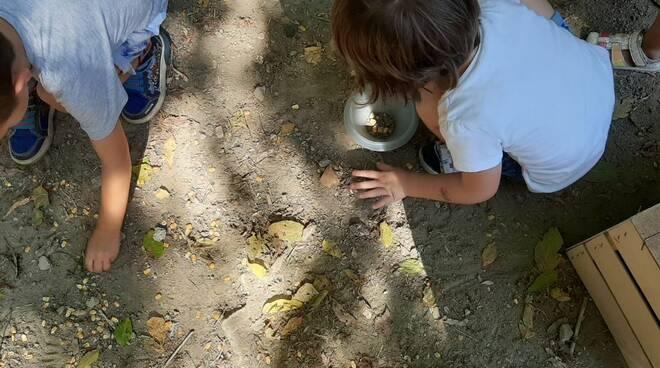 giochi all'aperto - bambini - natura