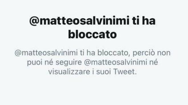 Maestri Salvini