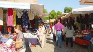 mercato Cesena