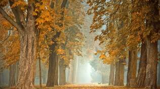 nebbia autunno meteo
