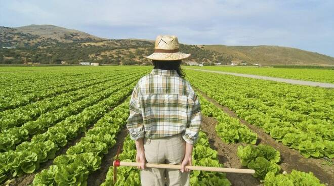 agricoltura donne imprese rosa