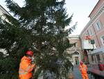 albero di natale 2020 ravenna