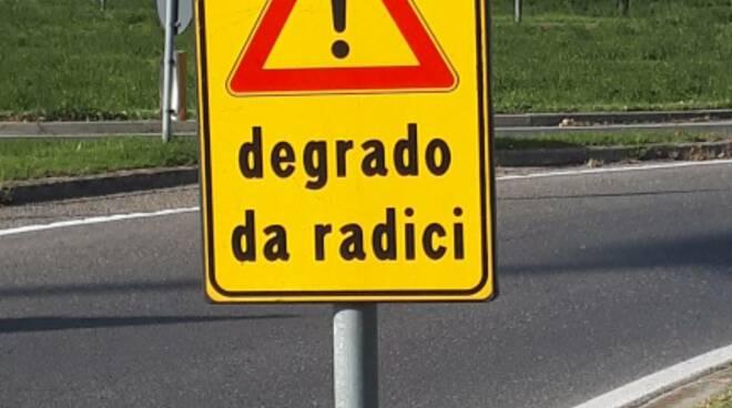 degrado radici, cartelli stradali