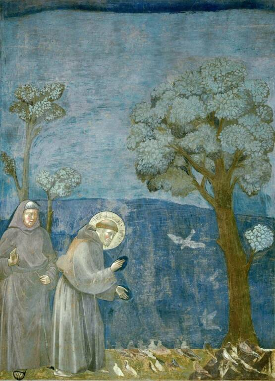 Giotto San Francesco