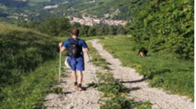Rocca San Casciano - sentieri della collina