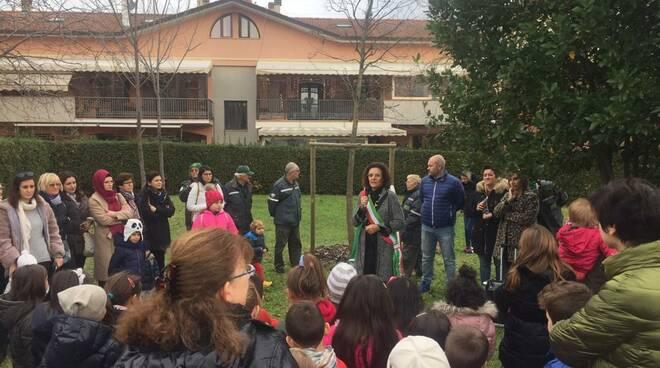 Verucchio-Giornata Nazionale dell'albero