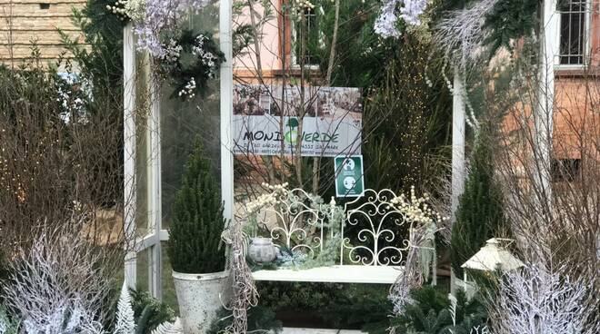 Cervia Verde Natale