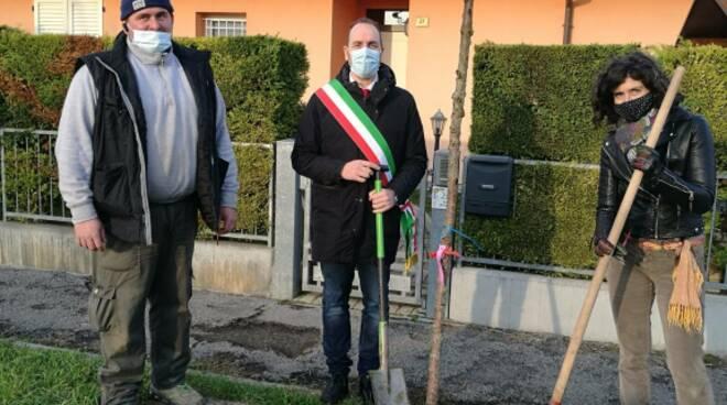 Sant'Agata sul Santerno ha due nuovi alberi e quattro arbusti grazie all'associazione Aipv