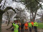 I professionisti del verde dell'Unione in addestramento a Faenza