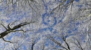 inverno gelo meteo