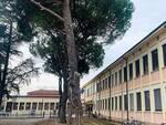 Massa Lombarda-scuola 'Quadri'
