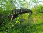 Ponte Legno Castrocaro