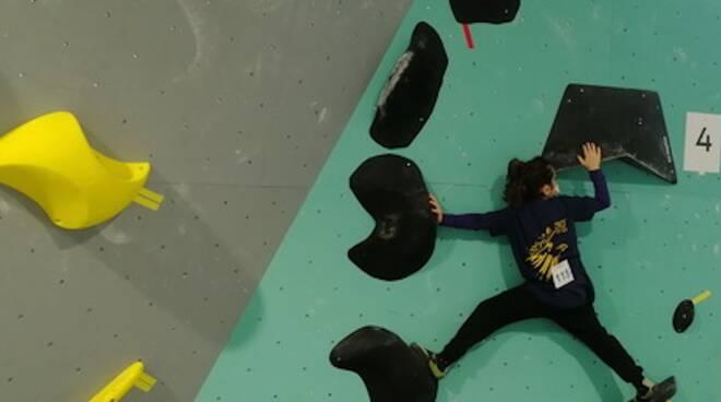 arrampicata - Istrice