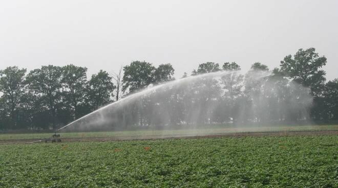 Irrigazione - Agricoltura - Canale Emiliano romagnolo