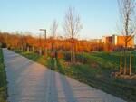 Parco Baronio