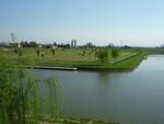 Bacino di Laminazione Parco Golfera Lugo
