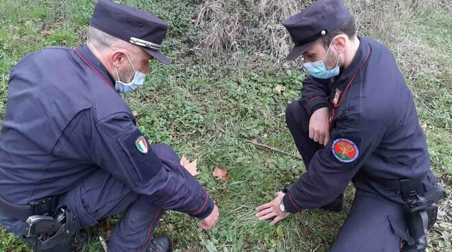 Carabinieri Forestali Forlì-Cesena
