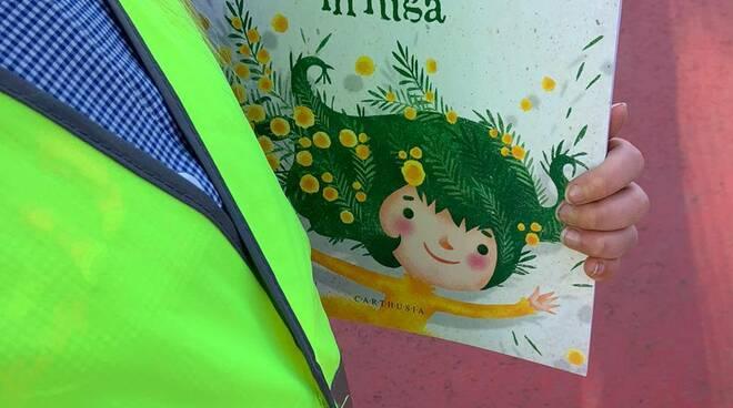 mimosa_in_fuga