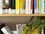 Libri_Mimosa