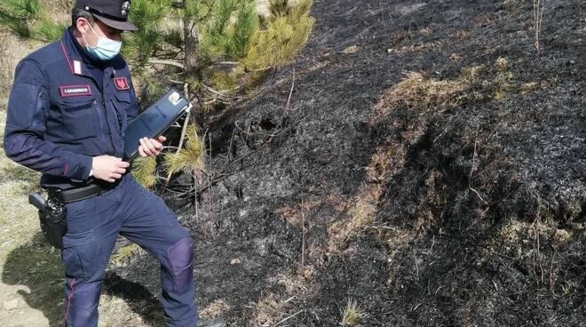 Allarme incendi boschivi in provincia di Forlì-Cesena