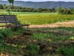 aree rurali e montane svantaggiate