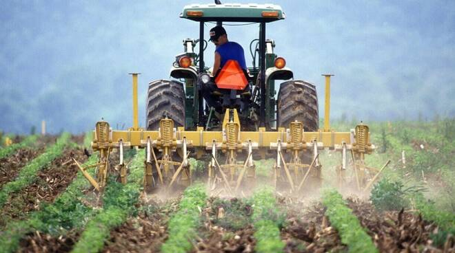lavoratore agricolo - agricoltura
