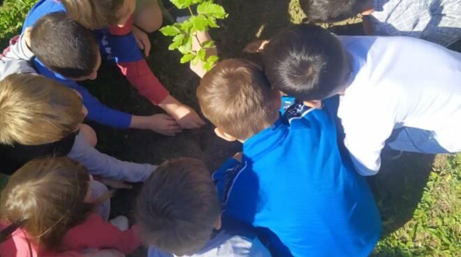 ambiente, natura, bambini, biodiversità