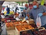 mercato ortofrutticolo - Bagnara
