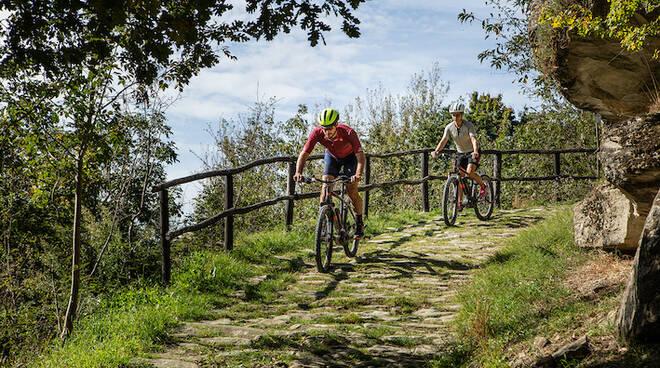 ciclovia bicicletta