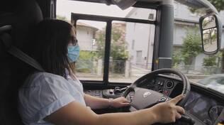 autista, bus, autobus, Start Romagna
