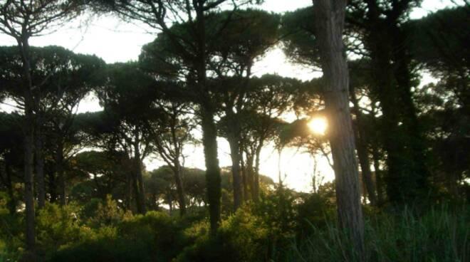 lido_di_classe_tramonto
